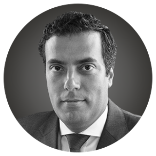 Portrait of Nuno Gomes
